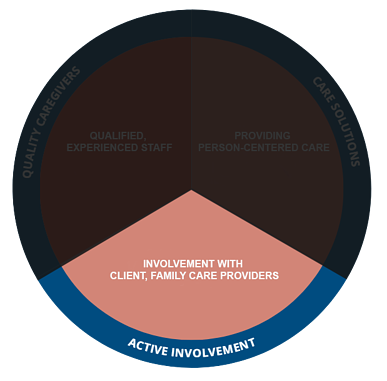 Active Involvement GreatCare Circle Pie