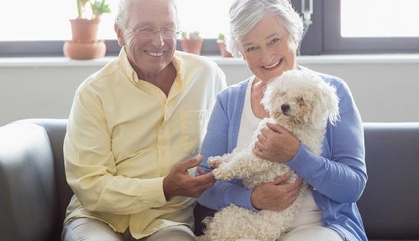 Senior-couple-holding-a-dog-LR.jpg