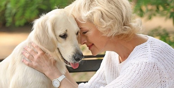 Guide to Seniors and Pet Care